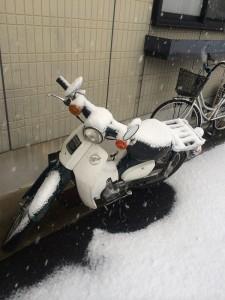 大阪府和泉市雪景色
